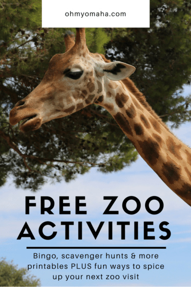 Lots of free printables and ideas to make any zoo you visit even more fun #zoos #printables #bingo #scavengerhunts
