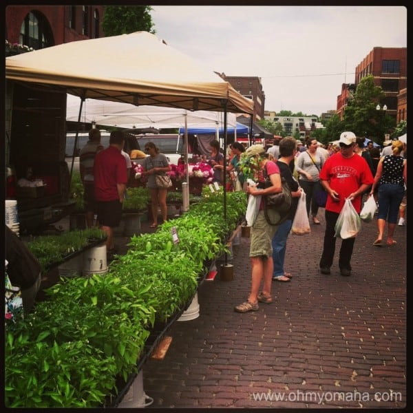 Omaha Farmers Market Fun