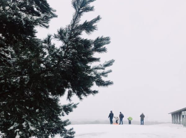 Ultimate Winter Guide To Mahoney State Park