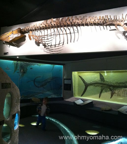 Just look at this room of prehistoric stuff. I mean, please. Look at it. My kids didn't.