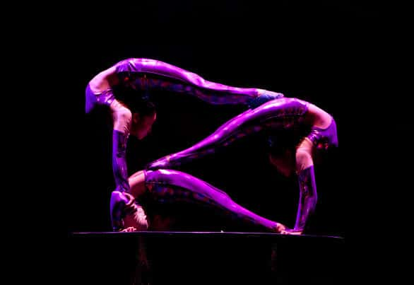 The Golden Dragon Acrobats will be at the Orpheum Theater Wednesday, April 29, 2015 at 7 p.m.