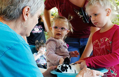 Explore Lincoln's zoo this weekend when it has hands-on activities throughout the zoo.