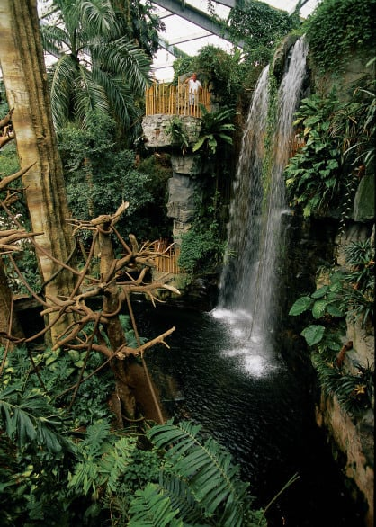 The Lied Jungle inside Omaha's zoo is as close as you're going to get to an exotic escape without leaving the city. Photo courtesy Nebraska Tourism