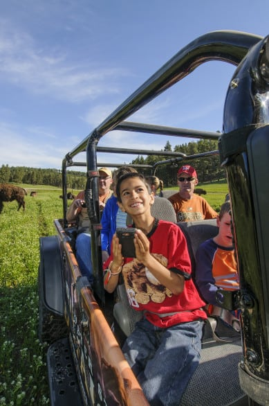 A Jeep safari at Custer State Park. Photo courtesy South Dakota Tourism