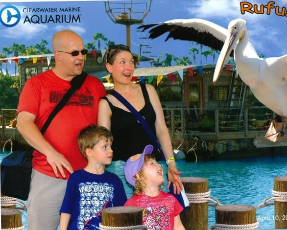 "Clearwater Marine Aquarium - If you know the movie ""Dolphin Tale,"" you know Rufus. There's a Rufus photo opp at the aquarium in Florida."