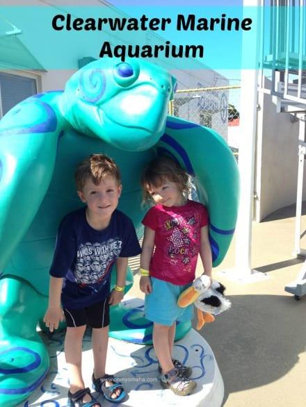 Clearwater Marine Aquarium (Winter's Home)