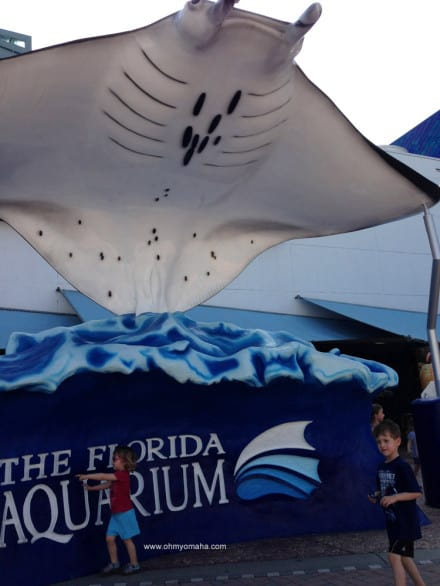 Things to do at The Florida Aquarium - Check out the giant sting ray at the entrance