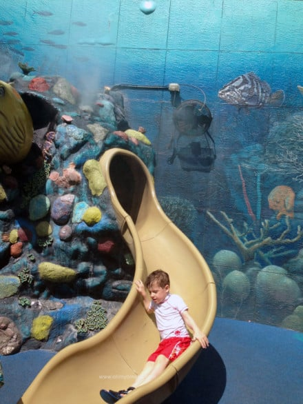 Things to do at The Florida Aquarium - Play outside in Explore a Shore.