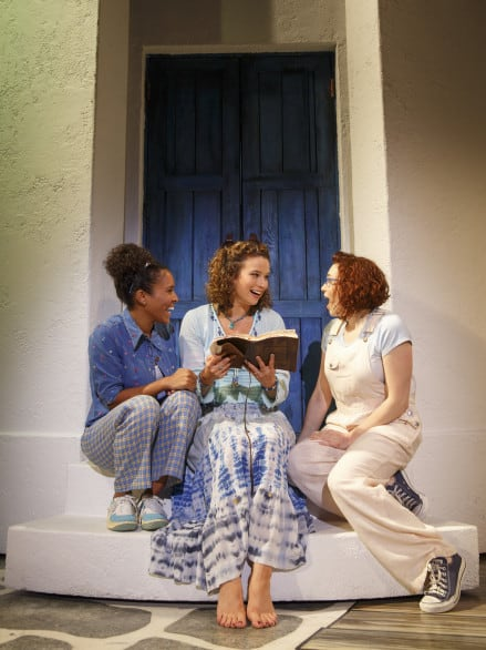 What guy wouldn't want to see a musical with ABBA music that focuses on female friendships? I mean, really.