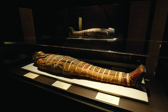 "There will be mummies - both human and animal - at ""Lost Egypt."" The exhibit runs through September 2015."