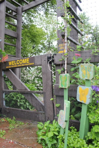 Intro to Heron Haven - A butterfly garden at Heron Haven, a small wildlife refuge in the heart of Omaha