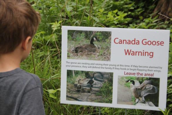 Wildlife warning sign at Heron Haven