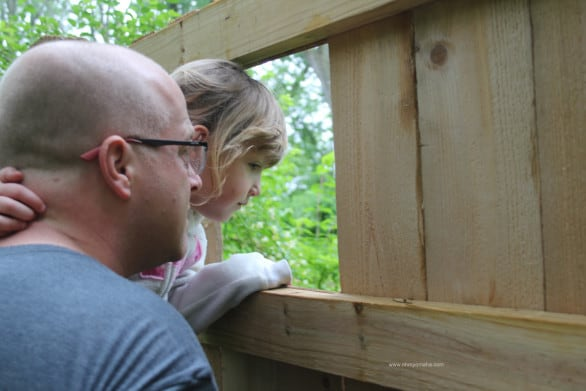 Intro to Heron Haven - A duck blind is a great way to watch wildlife undetected
