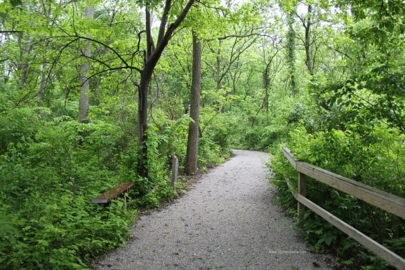 Heron Haven can be a serene place within Omaha.