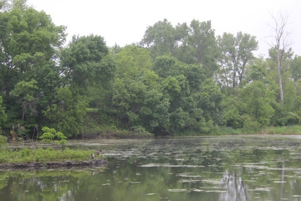 Intro to Heron Haven - A lake at Heron Haven, a small wildlife refuge in the heart of Omaha