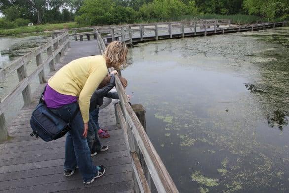 Boardwalk at Heron Haven in Omaha