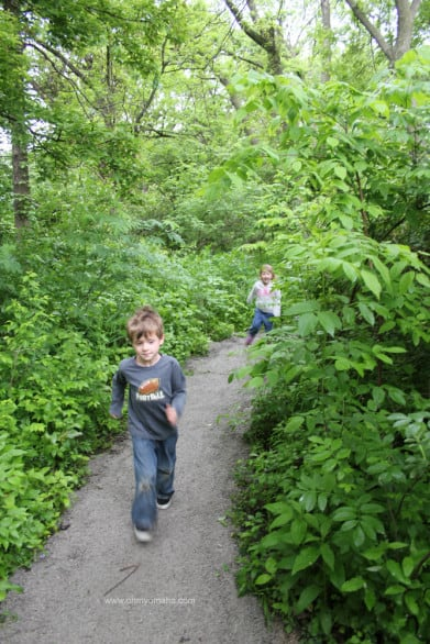 Things to do at Heron Haven - Walk a short, kid-friendly trail