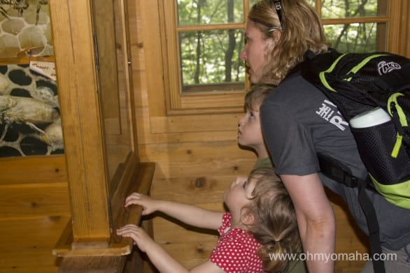 Checking out the beehive in the cabin.