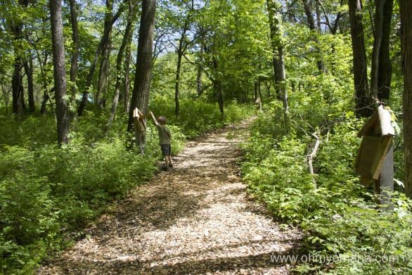 Interactive and educational activities dot the trail.