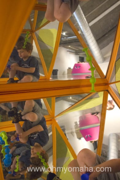 The inside of a large orange triangle had mirrors, which Farley loved. Mooch decided the outside was a perfect climbing all. Both were entertained.