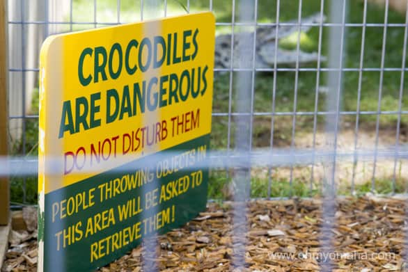 Love the funny signs at Reptile Gardens.
