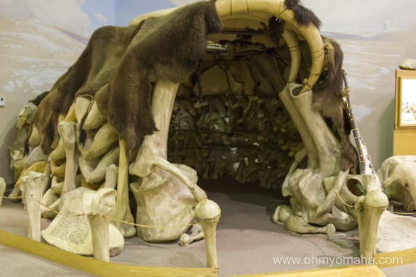 A replica of a hut made out of mammoth bones in Muller Exhibit Hall.