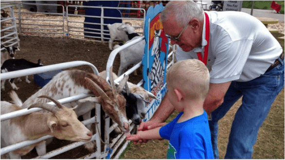 The petting zoo at the Nebraska State Fair.