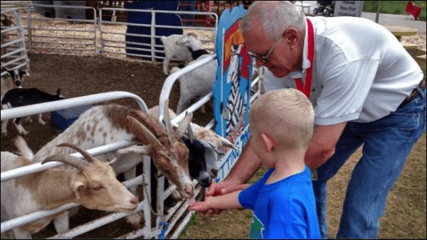 Insider's Guide To The Nebraska State Fair