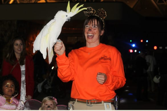 An animal ambassador at the Zoo Spooktacular. Photo courtesy Omaha's Henry Dooryly Zoo & Aquarium