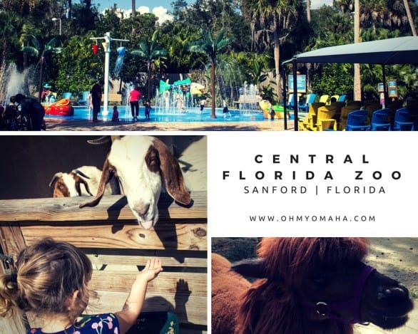 Central Florida Zoo - The highlights, animal experiences and hands-on fun at the zoo. This zoo is about 20 minutes from Orlando!