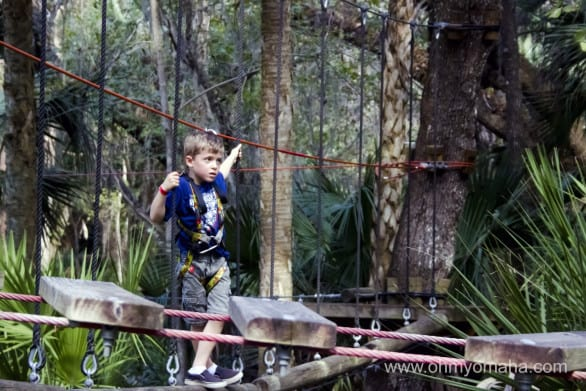 Kid on the ropes course at the Central Florida Zoo