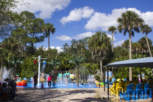 Cool off in the splash garden at Central Florida Zoo. Remember to pack swimsuits!