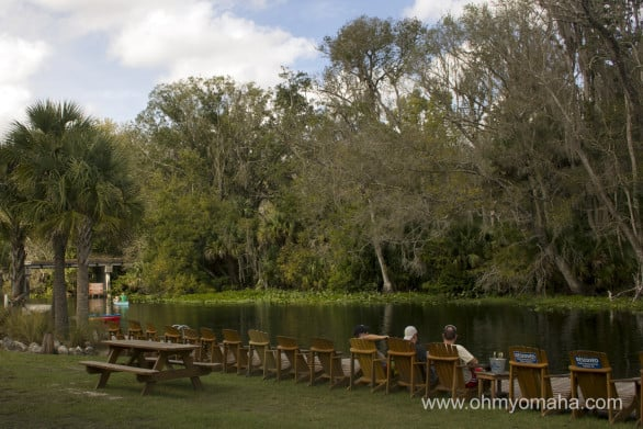 Chairs set up by Wekiva River at the outfitter Wekiva Island in Florida