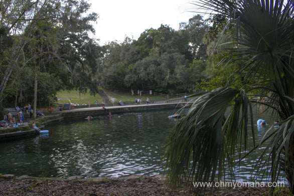 There were quite a few people swimming in the spring water at Wekiva Springs State Park. Entrance is $2 per canoe.