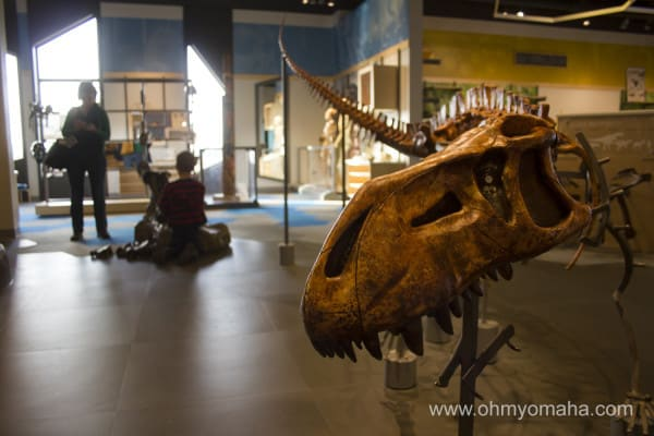 Dinosaur fossil inside the Museum at Prairie Fire