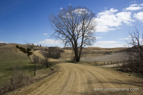 Fall would be a great time to drive the Loess Hill Scenic Biway, but that's not to say the vistas are bad in early spring.