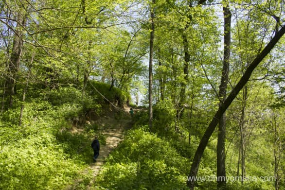 Hiking in part of the Loess Hills at Preparation Canyon State Park in Iowa