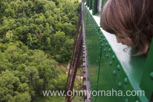 The kids on the train loved going over the high bridge.