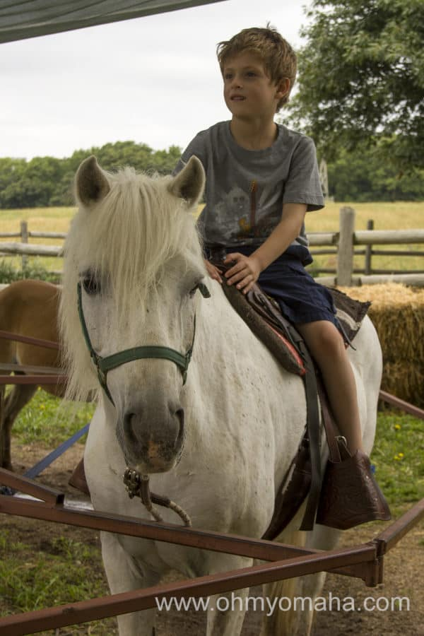 Trail Rides & Pony Rides At Mahoney State Park