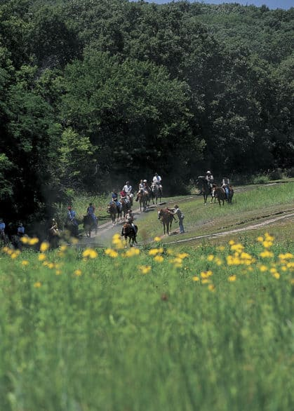 Mahoney State Park activities - Trail rides on horses are offered seasonally.