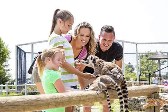 Family feeding a lemur at Tanganyka Wildlife Park near Wichita, Kansas