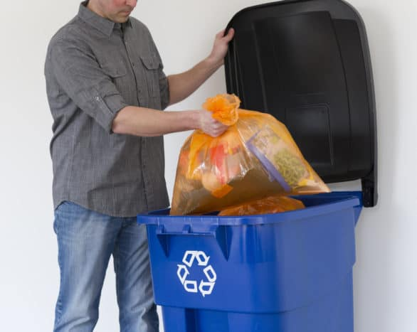 Put the orange Hefty® Energy Bag in with the rest of the recycling