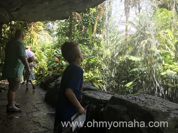 Waterfall inside the Climatron at Missouri Botanical Garden