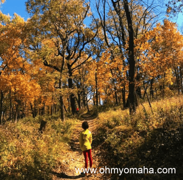 Great places to hike in the fall in Nebraska - Fontenelle Forest is located in Bellevue, Nebraska