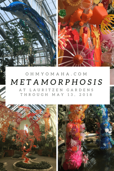 Metamorphosis at Lauritzen Gardens