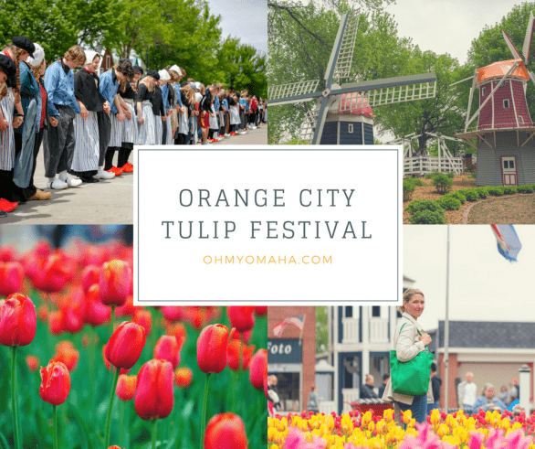 Orange City Tulip Festival Tips