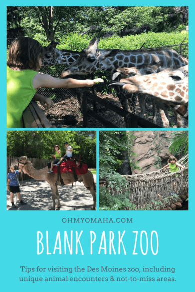 Headed to Des Moines, Iowa? Here's why you don't want to skip a trip to Blank Park Zoo if you're going with kids! #thisisiowa #zoos #familytravel