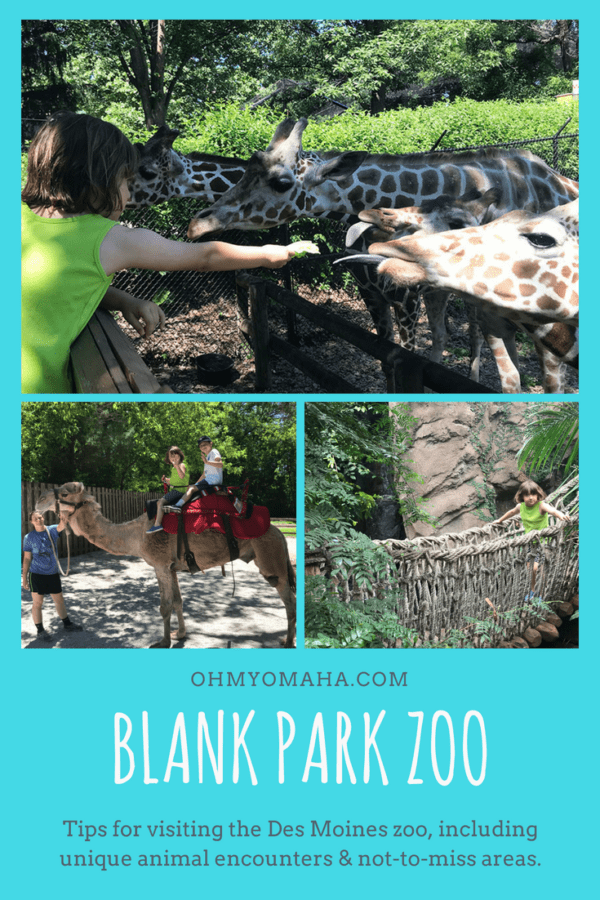 Tips for visiting Blank Park Zoo in Des Moines, Iowa