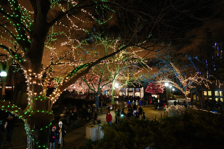 ZooLights runs from mid-November to early January each year at Lincoln Park Zoo.