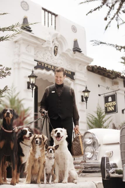 Dogs in front of dog-friendly hotel in Carmel-by-the-Sea California